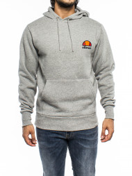ALPHA INDUSTRIES / Toce oh hoody grey