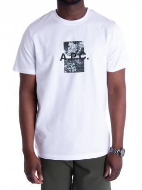 Teddy t-shirt aab blanc