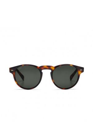 Berkeley sunglasses gloss tortoise