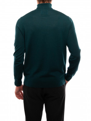 Flemming pullover turtle sea moss 3 - invisable